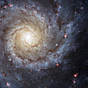 Spiral Galaxy M74 Print by Adam Romanowicz