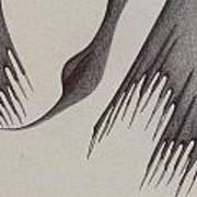 Stalactites Overhead Print by Giuseppe Epifani