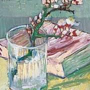 Still Life    A Flowering Almond Branch Print by Vincent Van Gogh