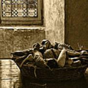 Still Life At Chenonceau Print by Nikolyn McDonald