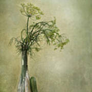 Still Life With Dill And A Cucumber Print by Priska Wettstein