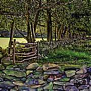 Stone Walled Print by Tom Prendergast