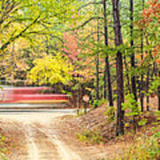 Stop - Beaver's Bend State Park - Highway 259 Broken Bow Oklahoma Print by Silvio Ligutti