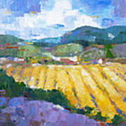Summer Field 2 Print by Becky Kim