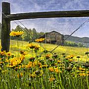 Summer Fields Print by Debra and Dave Vanderlaan