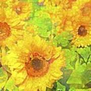 Sunflower 19 Print by Pamela Cooper