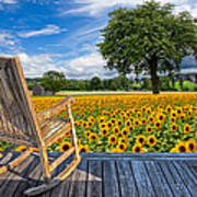 Sunflower Farm Print by Debra and Dave Vanderlaan