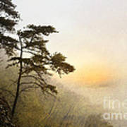 Sunrise In The Mist - D004200a-a Print by Daniel Dempster