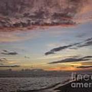 Sunset Stroll Print by Elizabeth Carr