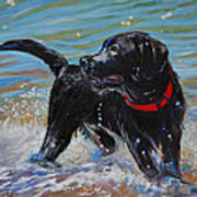Surf Pup Print by Molly Poole