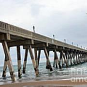 Surreal Blue Sky Ocean Coastal Fishing Pier Seagull North Carolina Atlantic Ocean Print by Kathy Fornal