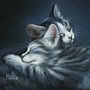 Sweet Dreams Print by Cynthia House