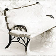 Take A Seat  And Chill Out - Park Bench - Winter - Snow Storm Bw Print by Andee Design