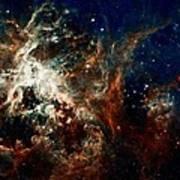 Tarantula Nebula Print by Amanda Struz