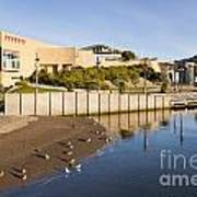 Te Papa Wellington New Zealand Print by Colin and Linda McKie