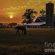 The Beauty Of A Rural Sunset Print by Mary Carol Story