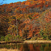 The Color Of Fall Print by Billy Beasley