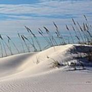 The Dunes Of Destin Print by JC Findley