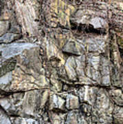 The Face In The Rock Print by JC Findley