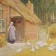 The Goose Girl Print by Arthur Claude Strachan