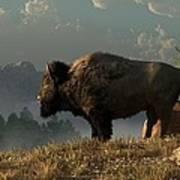 The Great American Bison Print by Daniel Eskridge