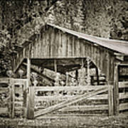 The Last Barn Print by Joan Carroll