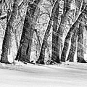 The Noreaster Bw Print by JC Findley