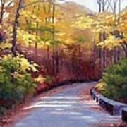 The Old Roadway In Autumn II Print by Janet King
