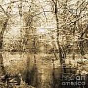 The Pond Print by Yanni Theodorou