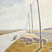 The Road To Nieuport Print by Willy Finch