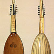 Theorbo, Made By Giovanni Krebar Print by Alfred James Hipkins