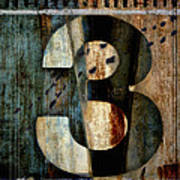 Three Along The Way Print by Carol Leigh