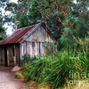 Timber Shack Print by Kaye Menner