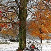 To Everything There Is A Season... Print by Diane E Berry
