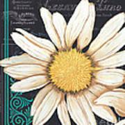 Tranquil Daisy 2 Print by Debbie DeWitt