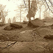Tree And Steps At Devils Den - Gettysburg Print by Jan W Faul