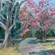 Trees Of Windermere Print by Susan E Jones