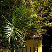 Tropical Invitation Print by Susanne Van Hulst