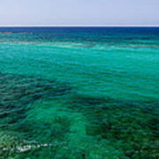 Turks Turquoise Print by Chad Dutson