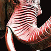 Tusk 4 - Red Elephant Art Print by Sharon Cummings