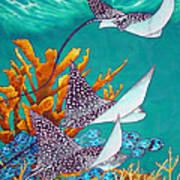 Under The Bahamian Sea Print by Daniel Jean-Baptiste