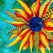 Urchin Print by Shannan Peters