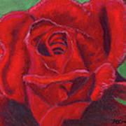 Very Red Rose Print by Arlene Crafton