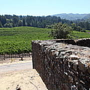 Vineyard And Winery Ruins At Historic Jack London Ranch In Glen Ellen Sonoma California 5d24537 Print by Wingsdomain Art and Photography