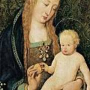 Virgin And Child With Pomegranate Print by Hans Holbein the Younger