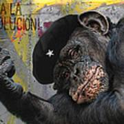 Viva La Evolucion Print by Joachim G Pinkawa