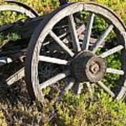 Wagon Wheels Print by Steven Parker