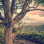 Waihee Ridge Trail Maui Hawaii Print by Edward Fielding