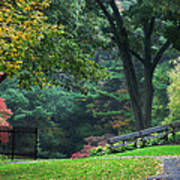 Walk In The Park Print by Christina Rollo