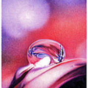 Water Drop Print by Natasha Denger